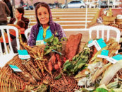 Indigenous and Rural Women Conserve Mother Earth and Empower Their Communities