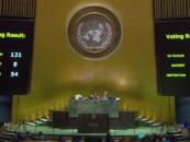 La Declaración de la ONU sobre los Derechos de los Campesinos es una gran victoria para la humanidad!