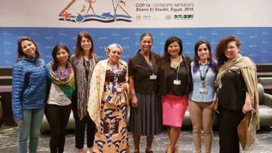 """Gender is not Plan B!"" Advancing gender-responsive measures in the CBD's Post-2020 Biodiversity Framework"