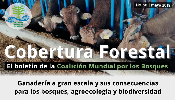 Cobertura Forestal 58: Ganadería a gran escala y sus consecuencias sobre los bosques, la agroecologia y la biodiversidad