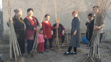 La conservación y recuperación de los bosques debe abordar la violencia contra las mujeres