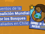 Global Forest Coalition and allies' events in Chile