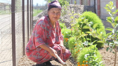 Women's rights and traditional knowledge are crucial for conserving biodiversity in Kyrgyzstan