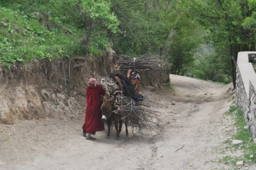 Daily woman's activities in Tajikistan. Photo by Noosfera