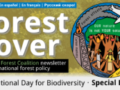 Cobertura Forestal 61: #OurNatureIsNotYourSolution, Día internacional de la biodiversidad