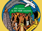 Action alert: join us to oppose nature-based solutions greenwash on International Day for Biological Diversity