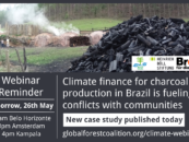 Climate finance for bioenergy and tree plantations is fueling conflicts with communities in Brazil