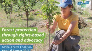 Informe anual de la Coalición Mundial por los Bosques del 2019: La protección de los bosques a través de la acción y abogacía basado en los derechos