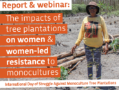 The impacts of tree plantations on women & women-led resistance to monocultures