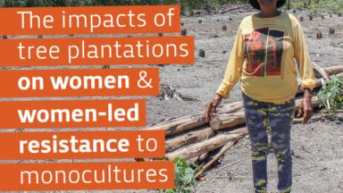 Impactos de las plantaciones de monocultivos de árboles en las mujeres y resistencia liderada por mujeres contra los monocultivos