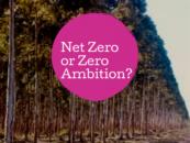 Venez, venez! Le Cirque Net Zero arrive dans une forêt près de chez vous
