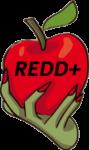15 años de REDD+: ¿ha valido la pena el dinero?