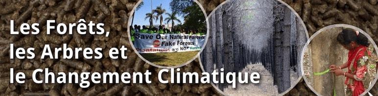 Les Forêts, Les Arbres et le Changement Climatique