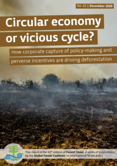 Cover of Circular economy or vicious cycle? How corporate capture of policy-making and perverse incentives are driving deforestation