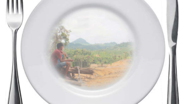 Swallowing Indonesia's forests: New report reveals how Indonesia's proposed food estate projects threaten a social and environmental disaster of global concern
