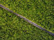 The post-2020 Global Biodiversity Framework, a massive step back in time