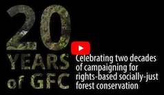 Video celebrating 20 years of the GFC