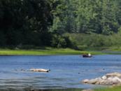 Turismo comunitario versus turismo masivo: ¿Cuáles son las implicaciones para los bosques y las comunidades?