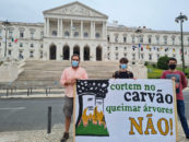 Alarm over costly and polluting conversion of Pego power station in Portugal