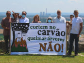 Over 60 groups publish open letter in opposition to a coal-to-biomass conversion in Portugal