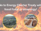 Open Letter opposing the Energy Charter Treaty and the proposed inclusion of biomass energy in it